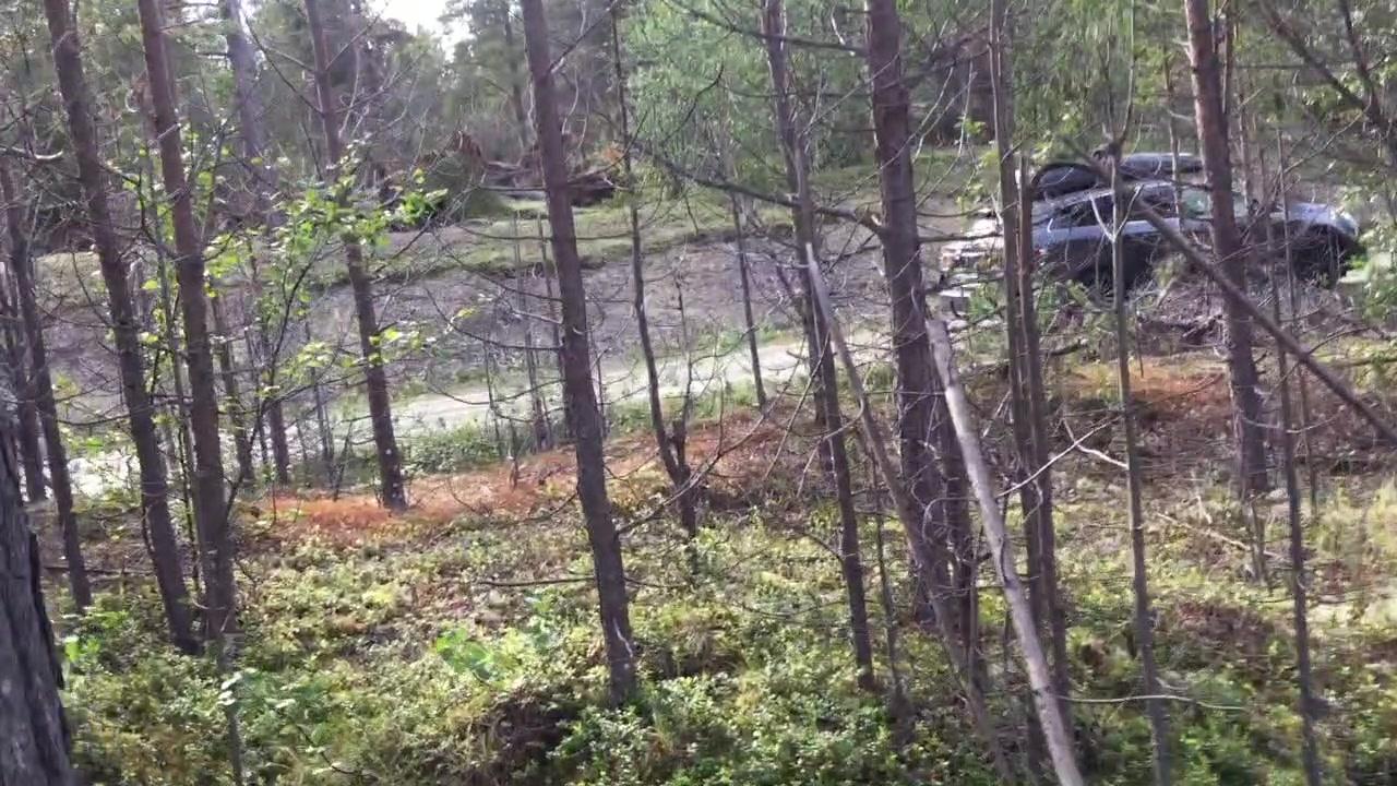 Over 100 furutrær knakk som fyrstikker i møte med onsdagens tordenvær i Karasjok